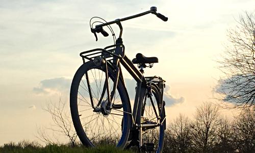 Fahrrad Gazelle